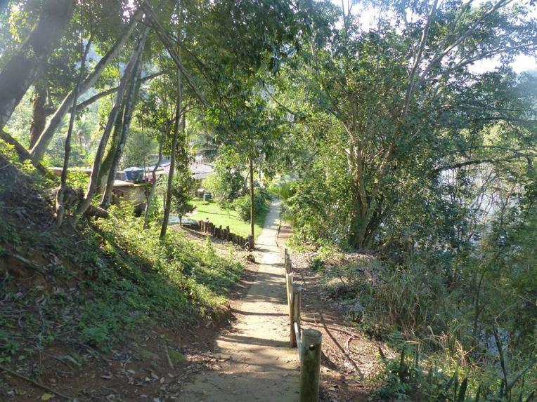 Saarella ei ole autoja, joten kylän pääkatu on kapea ja hiljainen.
